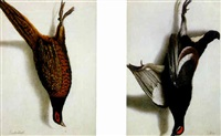 a black grouse hanging by cornelis (bilcius) biltius