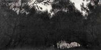 黑夜的树之十 by xu jiacun