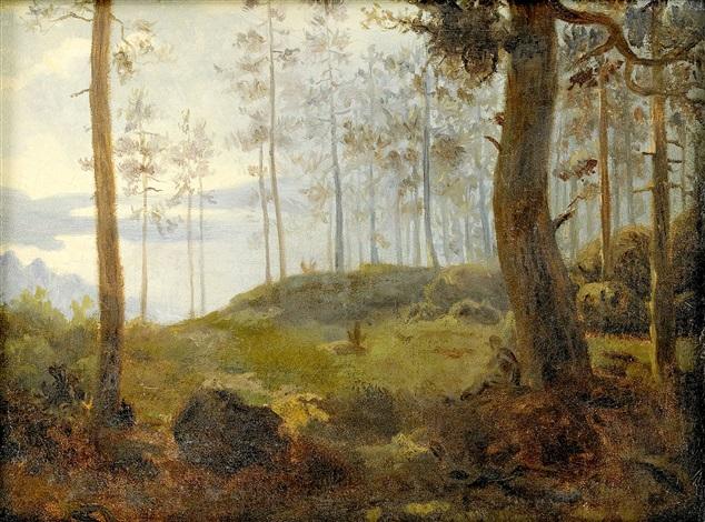 furuskog by carl fredrik hill