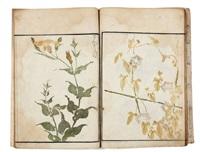 sôka ryakuga shiki - croquis de fleurs et plantes (vol w/ 59 works and title) by kitao masayoshi