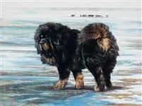 风雪藏獒 (tibetan mastiff in the blizzard) by lin yue