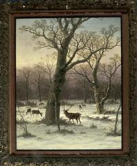 hirsche im winterwald by caesar bimmermann
