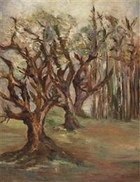 bäume by rudolf zender