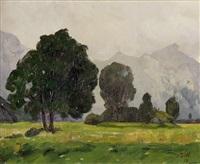 landschaft mit dunklen bäumen und bergkette im hintergrund by johannes weber
