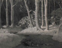 stream in winter by carl woolsey