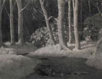 stream in winter by carl woolsey