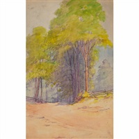 country road with tall trees by irene bishop hurley