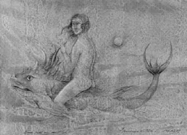venus reitet auf dem fisch hommage à dürer by werner holz