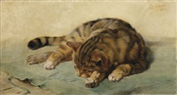 liegende katze by julius adam the younger
