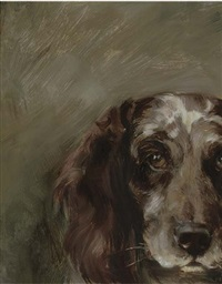 portrait of a spaniel by florence jay