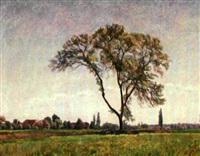 landschaft mit baum by philippe zysset