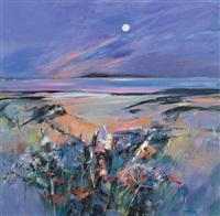 midsummer, arisaig by shelagh campbell