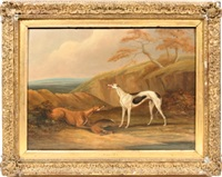 image of two greyhounds by samuel henry alken