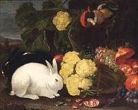 stillleben mit sitzendem, weißen kaninchen, kohlköpfen, weintrauben und granatäpfeln by franz werner von tamm