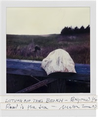 sitting on this bench--beyond the road is the sea--mabou june 03 by robert frank