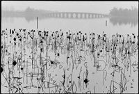 kun ming lake, summerpalace, beijing by rené burri