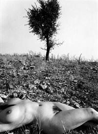 untitled, from the series nu de la forêt calcinée by lucien clergue