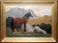 wild stallion in the mountains by albert reibmayer