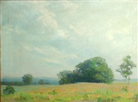 meadow with trees under cloudy skies by irma renee koen