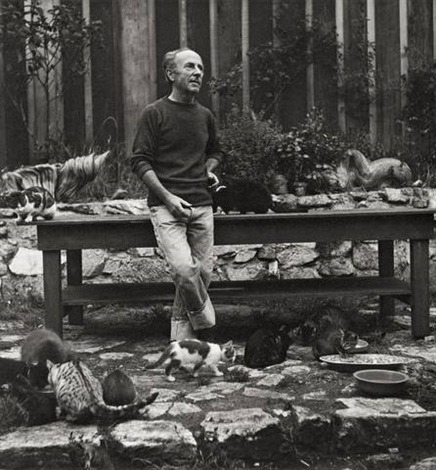 edward weston, photographer, with his cats by imogen cunningham