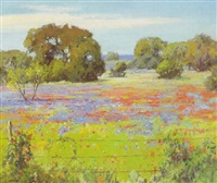 texas wildflowers by marlin linville