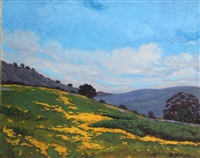 california wildflowers on rolling hills by jesse don rasberry