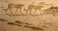 cheetahs by hans j. peeters