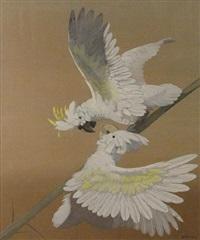 two sulfur-crested cockatoos by julius moessel