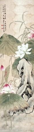 荷花争艳 by tang shishu