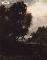 landscape by p. v. blviy