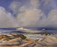 rocky coast by robert edward wood