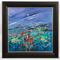 assynt moon by shelagh campbell