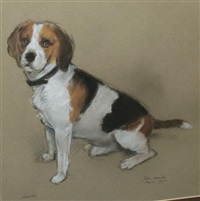 "portrait of ""harvey,"" a beagle by peter wardle"