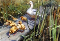 duck and ducklings by abraham hulk the younger