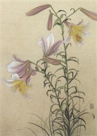 blomster by kurt müller wolkenstein