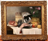 nature morte avec chat by guillaume romain fouace