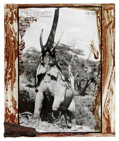 kenya elephant by peter beard