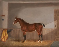toffy, a chestnut hunter in a stable and kaffir (+ a black racehorse in a stable; 2 works) by edwin (of bath) loder