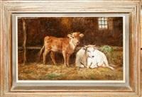 cows by domenico battaglia