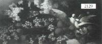 still life of doves and fruit by r. casanova