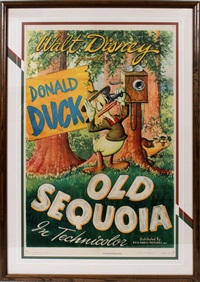 old sequoia by walt disney