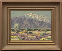 wild flowers mt. san jacinto, palm springs, california by carl sammons