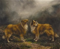 collies in a misty landscape by adrienne lester