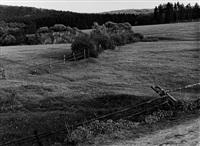 möhnewiesen near völlinghausen by albert renger-patzsch