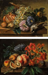peaches, apricots, a plum, hyacinth and other flowers on a stone ledge (+ grapes on the vine, a fig, walnuts, flowers and a dead bird; pair) by cornelis van spaendonck