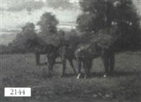horses by giovanni sanvitale