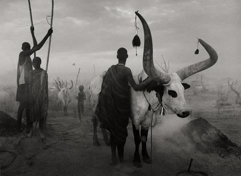sud soudan south sudan by sebastião salgado