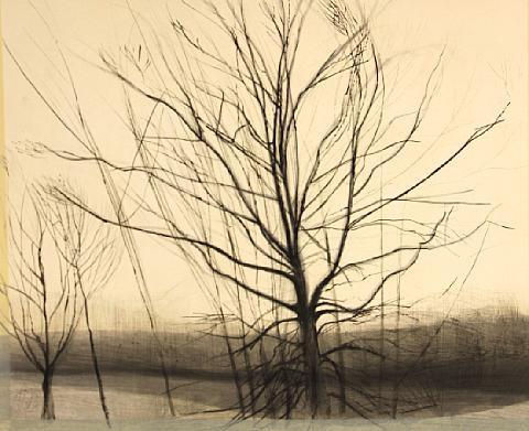 pin oak at the pond by sylvia plimack mangold