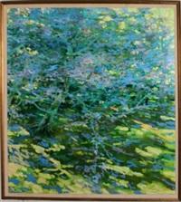 landscape by steven bagnell