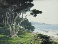 view of monterey bay by jerry van megert